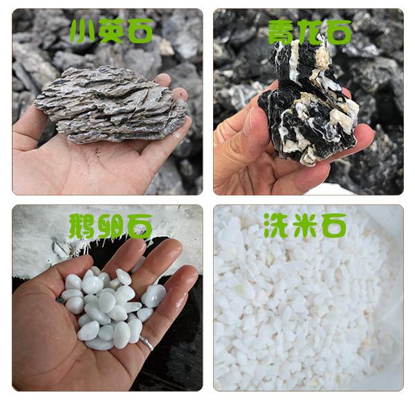 百石汇-小英石-青龙石-鹅卵石-洗米石.jpg