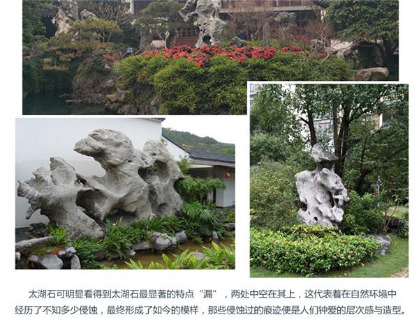 优德88登录大型太湖石 (3).jpg