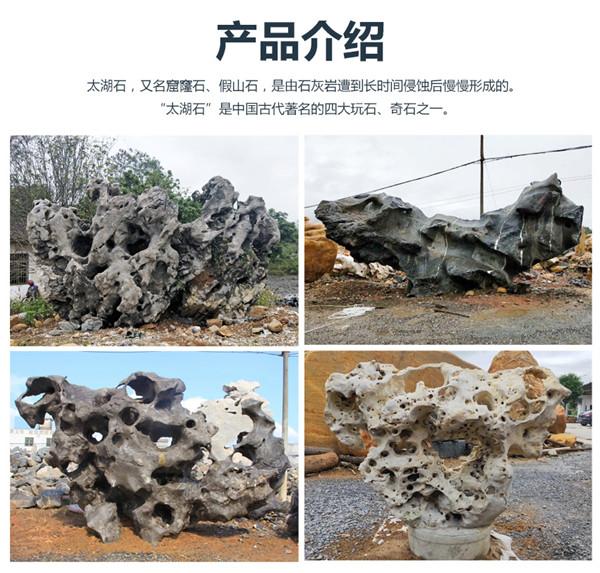 优德88登录太湖石 (1).jpg